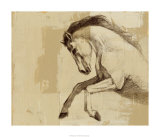 Majestic Horse II Limited Edition by Ethan Harper