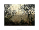 Wooded Solace II Premium Giclee Print by Jennifer Goldberger