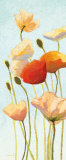 Just Being Poppies II Art by Shirley Novak