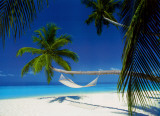 Maldives Island - Hammock Posters