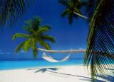 Maldives Island - Hammock Posters