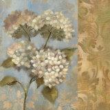 Hydrangea on Soft Blue Prints by Silvia Vassileva