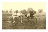 Man in Horse-Drawn Carriage in Grass Print