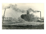 Blown Down Power Lines Prints
