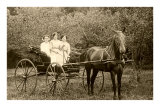 Three Women in Horse-Drawn Buggy Prints