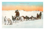 Sled Dog Team Poster