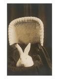 Rabbit in Pram Art