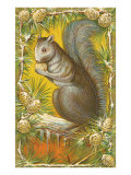 Squirrel in Pine Cones Prints