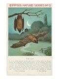 Facts About Bats Giclee-tryk i høj kvalitet