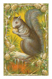 Squirrel in Pine Cones Poster