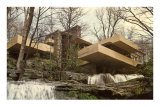 Falling Water House Affiches
