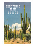 Greetings from Tucson, Arizona, Saguaros Prints