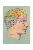 Phrenology Chart of Head Posters
