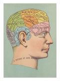 Phrenology Chart of Head Poster