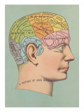 Phrenology Chart of Head Poster