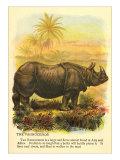 Rhinoceros Giclee-tryk i høj kvalitet