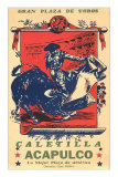 Bullfighting from Acapulco Prints