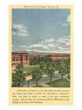University of Arizona at Tucson Posters