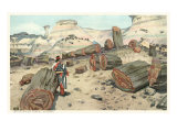 Hopi Indian in Petrified Forest, Arizona Print