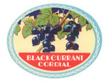 Blackcurrant Cordial Label Posters