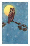 Owl with Full Moon Prints