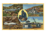 Gold Mining Scenes in California Print