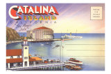 Cover for Catalina Island Photo