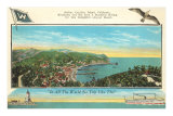 Catalina Harbor Poster