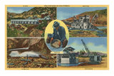 Gold Mining Scenes in California Posters