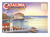 Cover for Catalina Island Posters
