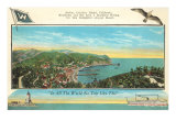 Catalina Harbor Prints