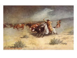 Cattle Stampede on the Range Prints