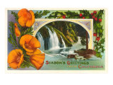 Poppies, Waterfall, Season's Greetings from California Poster