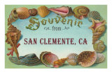 Shell Border Souvenir from San Clemente Prints