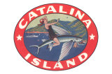 Woman Riding Flying Fish, Catalina Island Photo