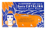 Ticket to Santa Catalina Poster