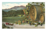 Vineyards, Los Olivos Prints