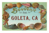 Shell Border Souvenir from Goleta, California Posters