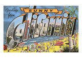 Greetings from Sunny California Beach Scene Poster