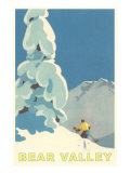 Big Snowy Pine Tree and Skier, Bear Valley Posters