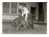 Sleeping Cowboy on Shetland Pony Prints
