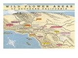 Map of Southern California Wild Flower Areas Poster