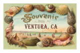 Souvenir from Ventura Prints