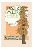 Palo Alto and Stanford University Prints