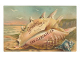 Conch Shell Greetings from San Clemente Posters
