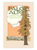 Palo Alto and Stanford University Art