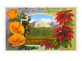 Season's Greetings, Ventura, Poppies, Poinsettias Posters