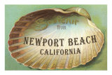 Clam Shell Souvenir from Newport Beach, California Poster