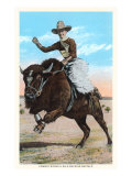 Buffalo Rider Prints