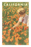 Woman Sitting in Poppies, California Posters